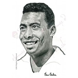 CARBONCILLO PELÉ